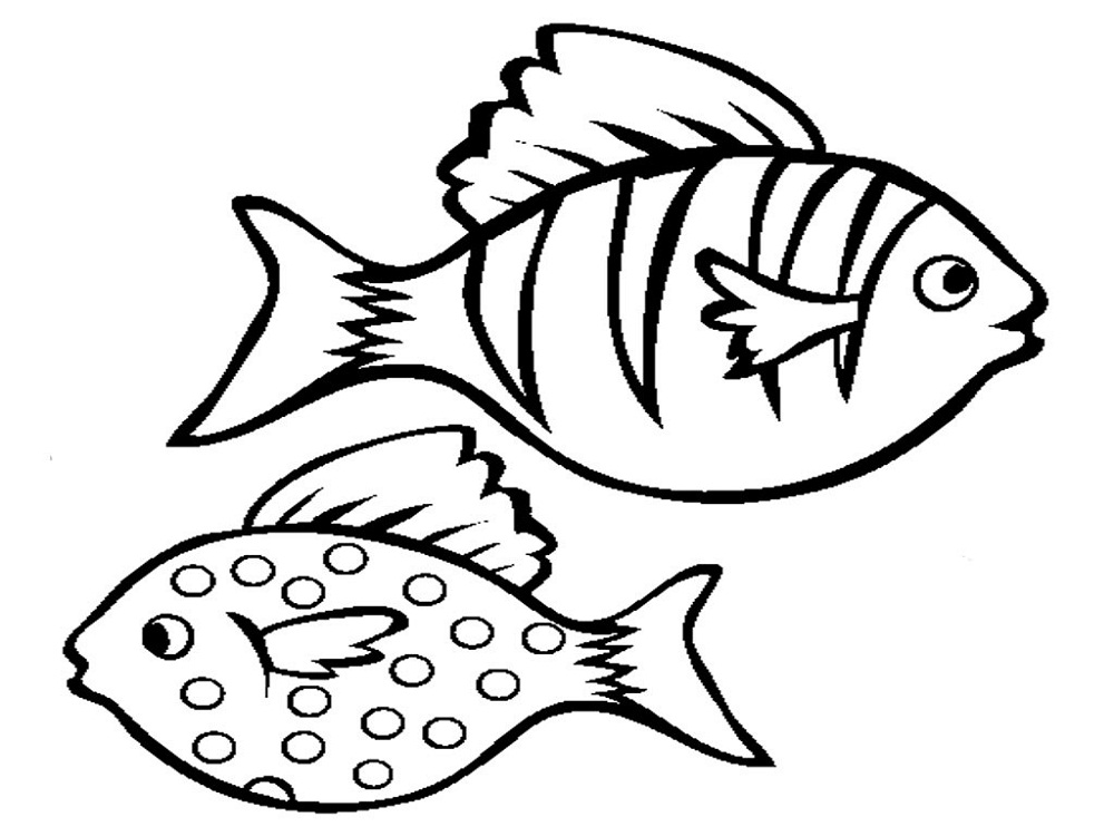 Fish Color Pages to Print | Activity Shelter