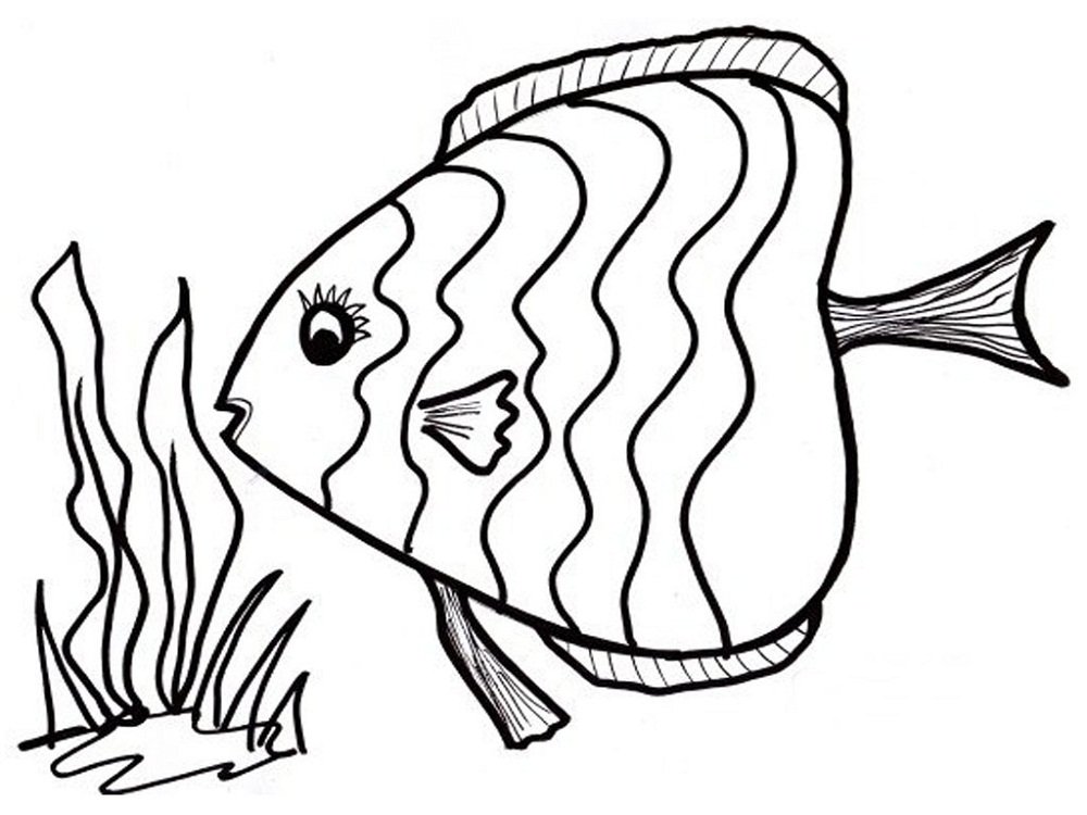 Fish coloring page 2016 printable activity shelter for Fish coloring pages for preschool