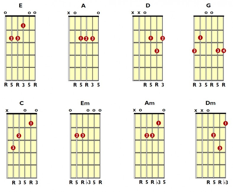 guitar chords new