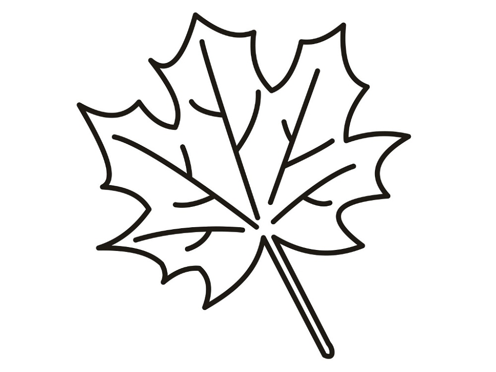 Leaf Coloring Pages Printable