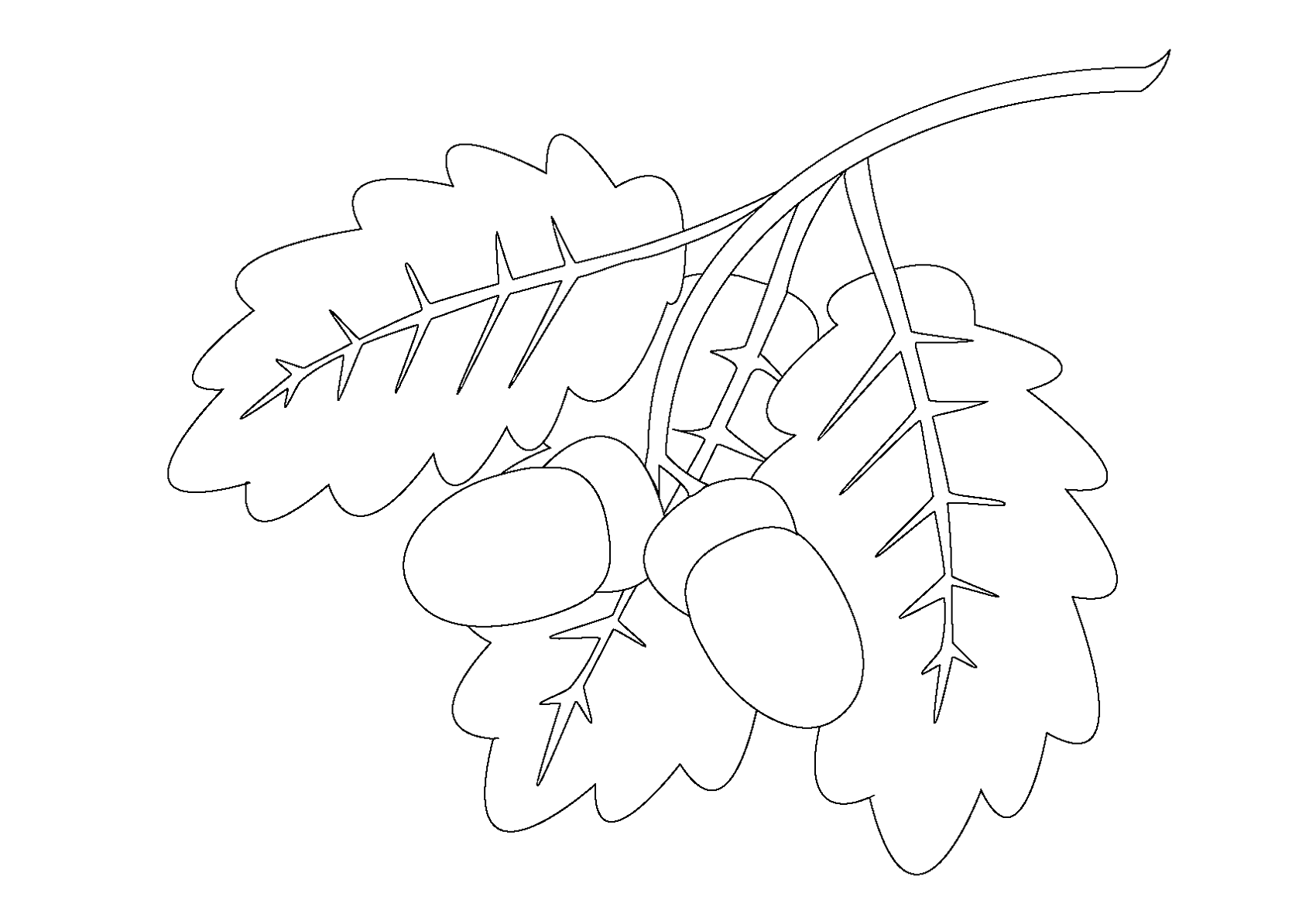 coloring pages oak leaf - photo#19