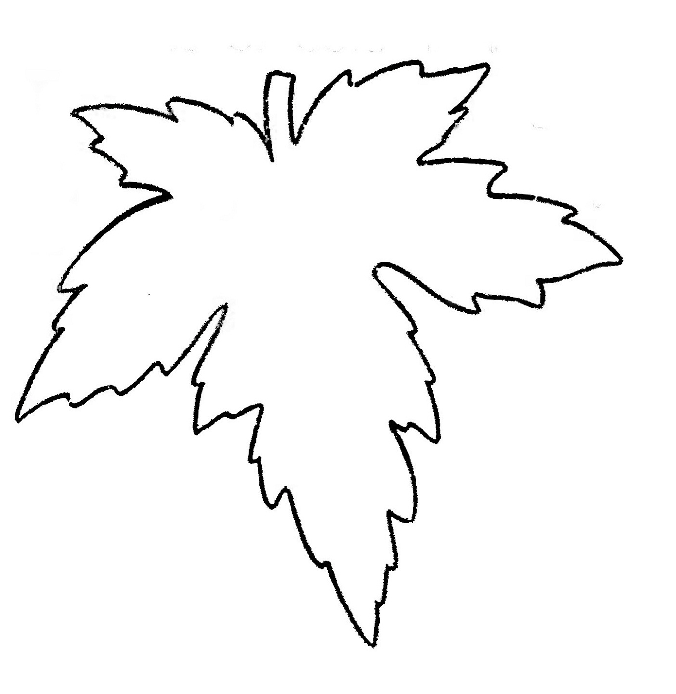 Leaf Coloring Pages for Preschool | Activity Shelter