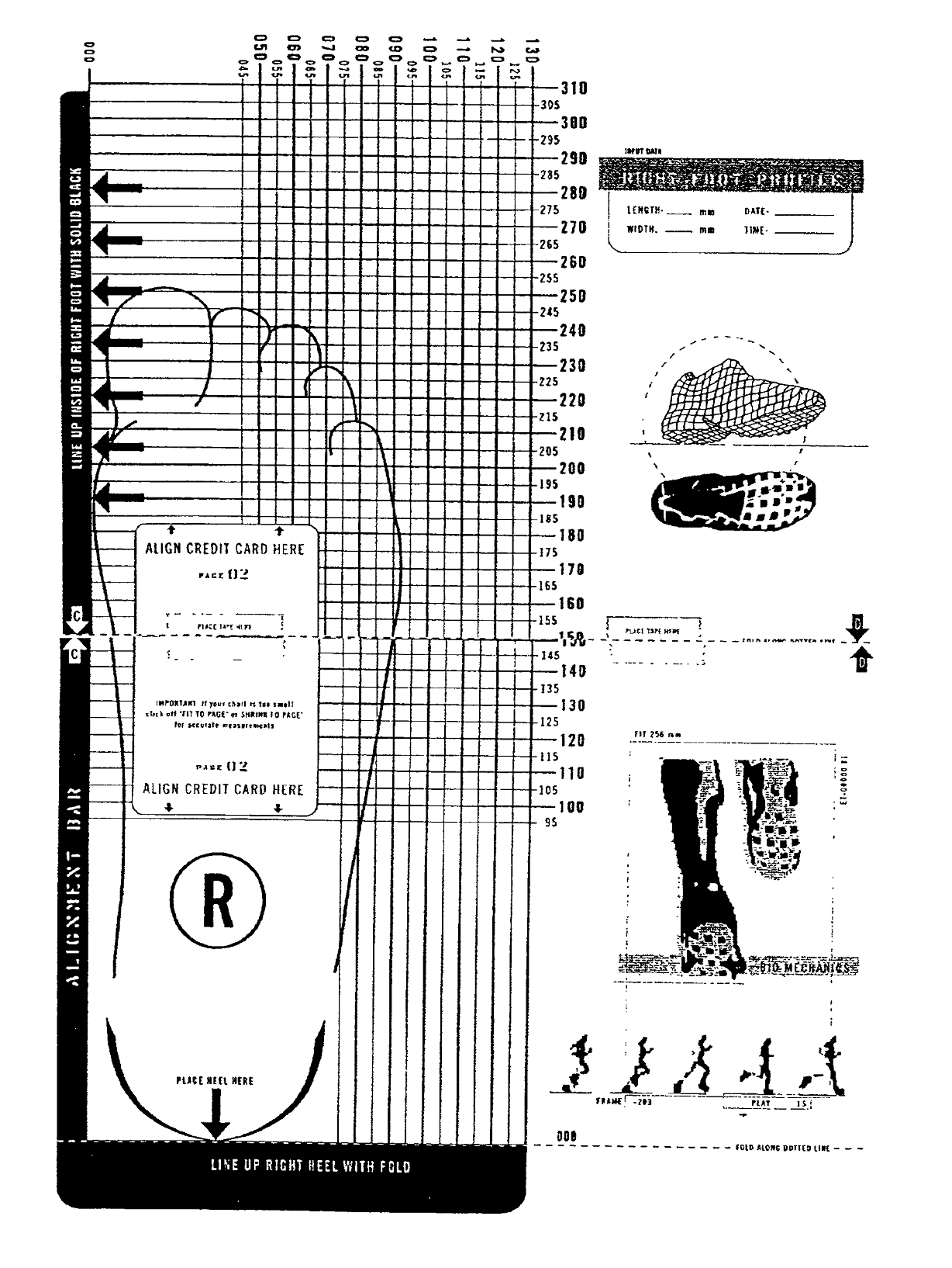 It is a picture of Modest Printable Shoe Size Chart