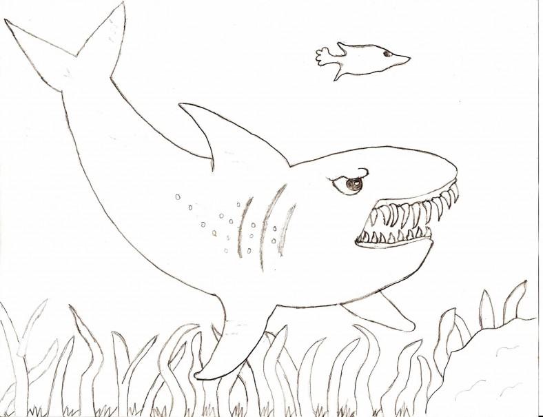 shark sheets for kids printable
