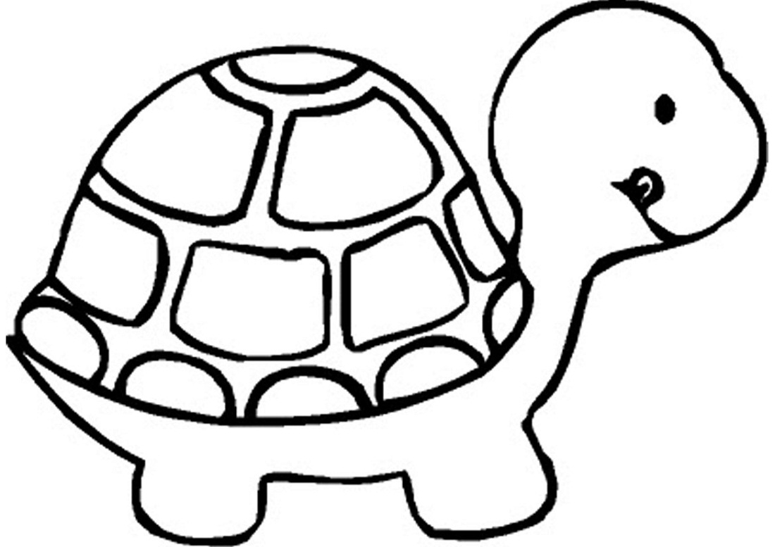 coloring book pages turtle