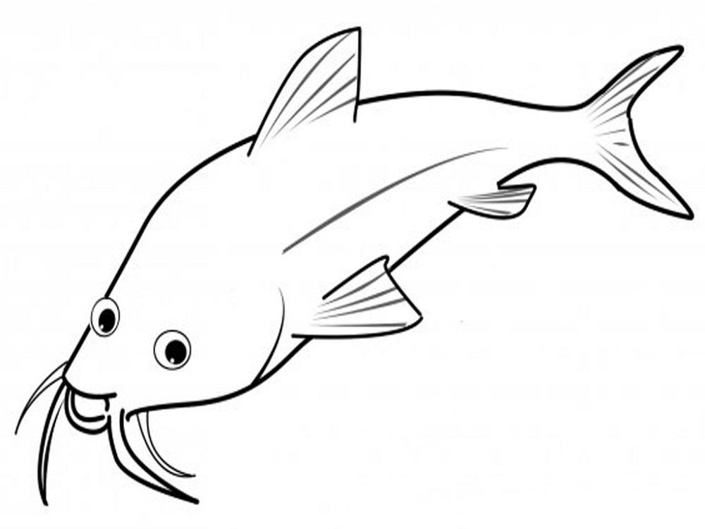 Fish Color Sheet Printable Activity