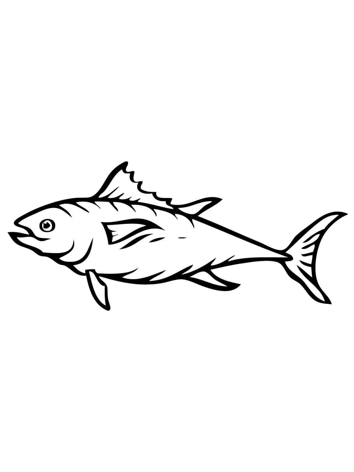 fish color sheet new