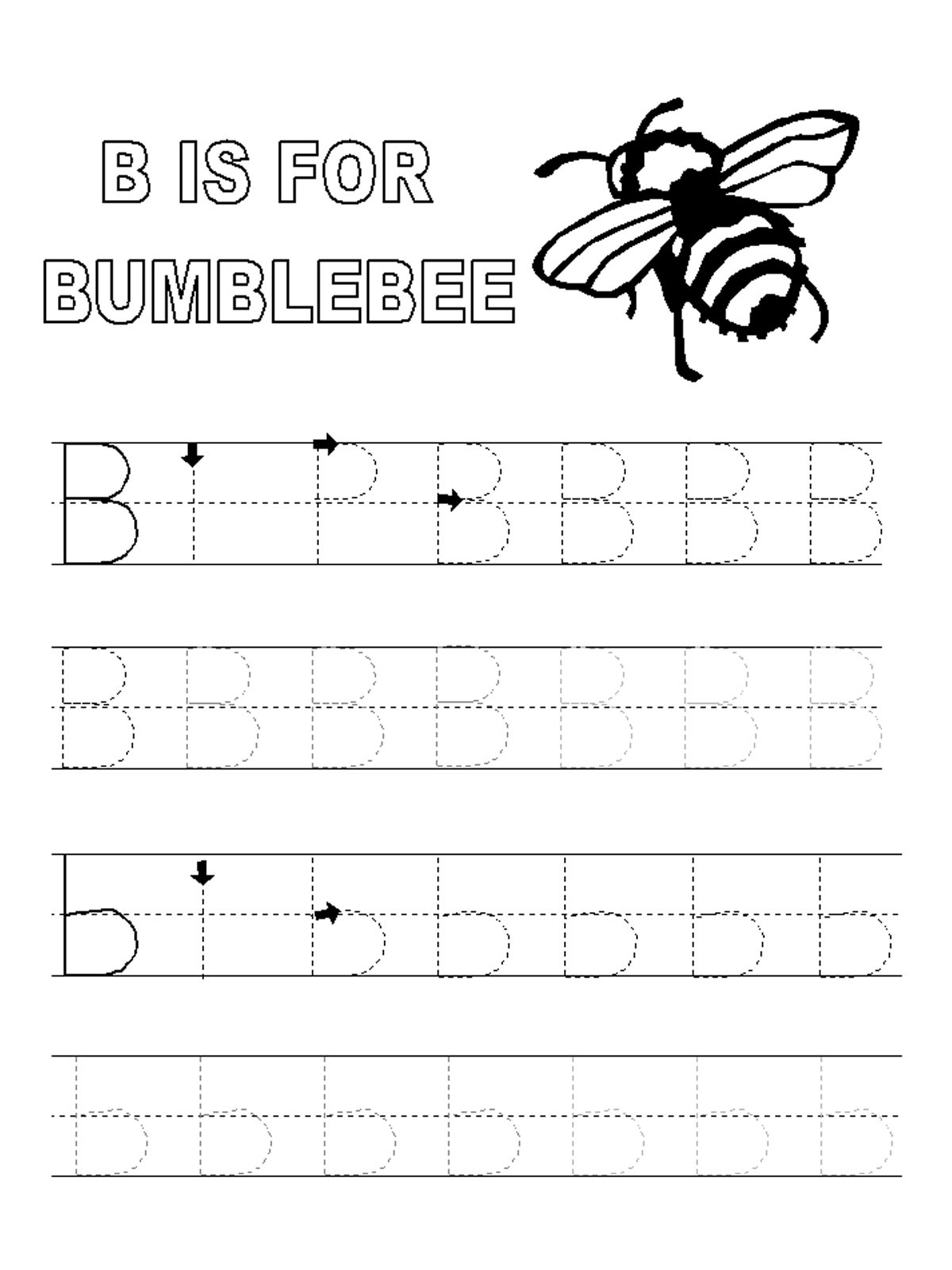 alphabet tracing pages letter B