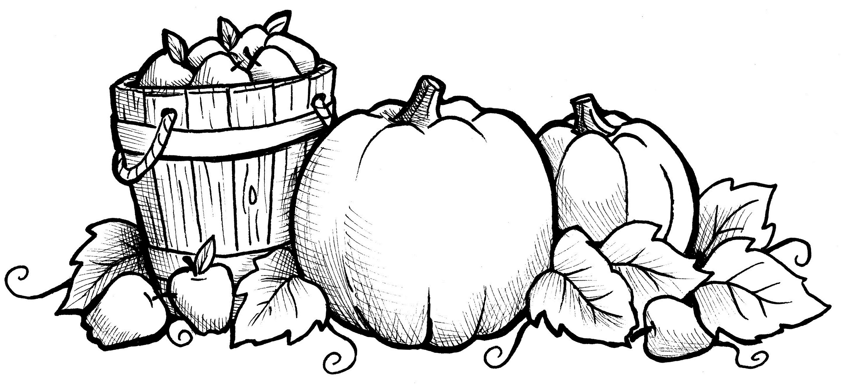 fall coloring sheets pumkin