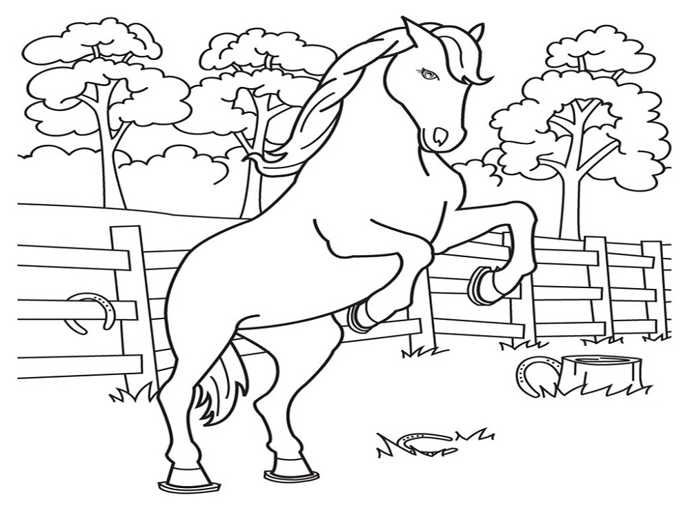 horse color sheet for children - Kids Drawing Sheet