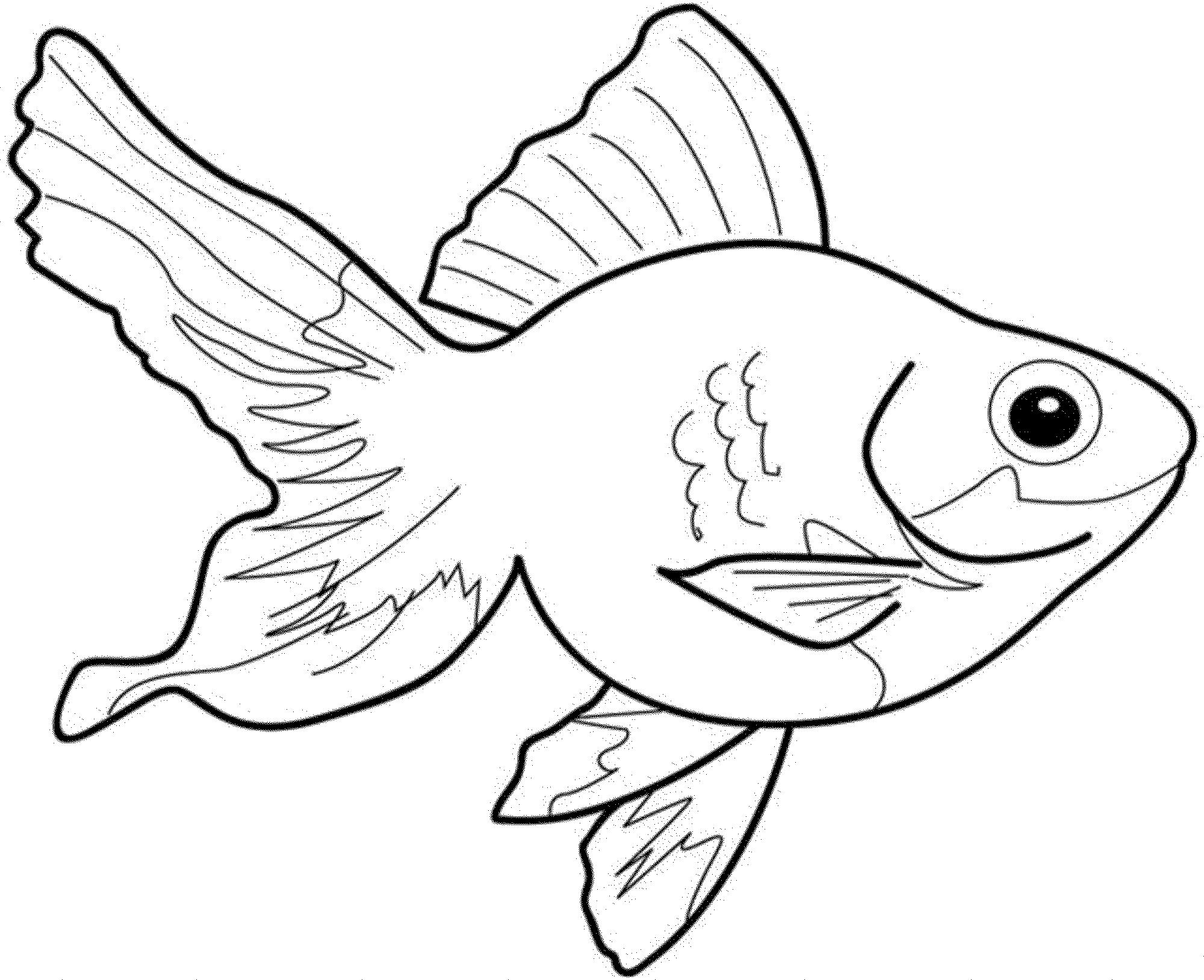 fish-color-pages-best