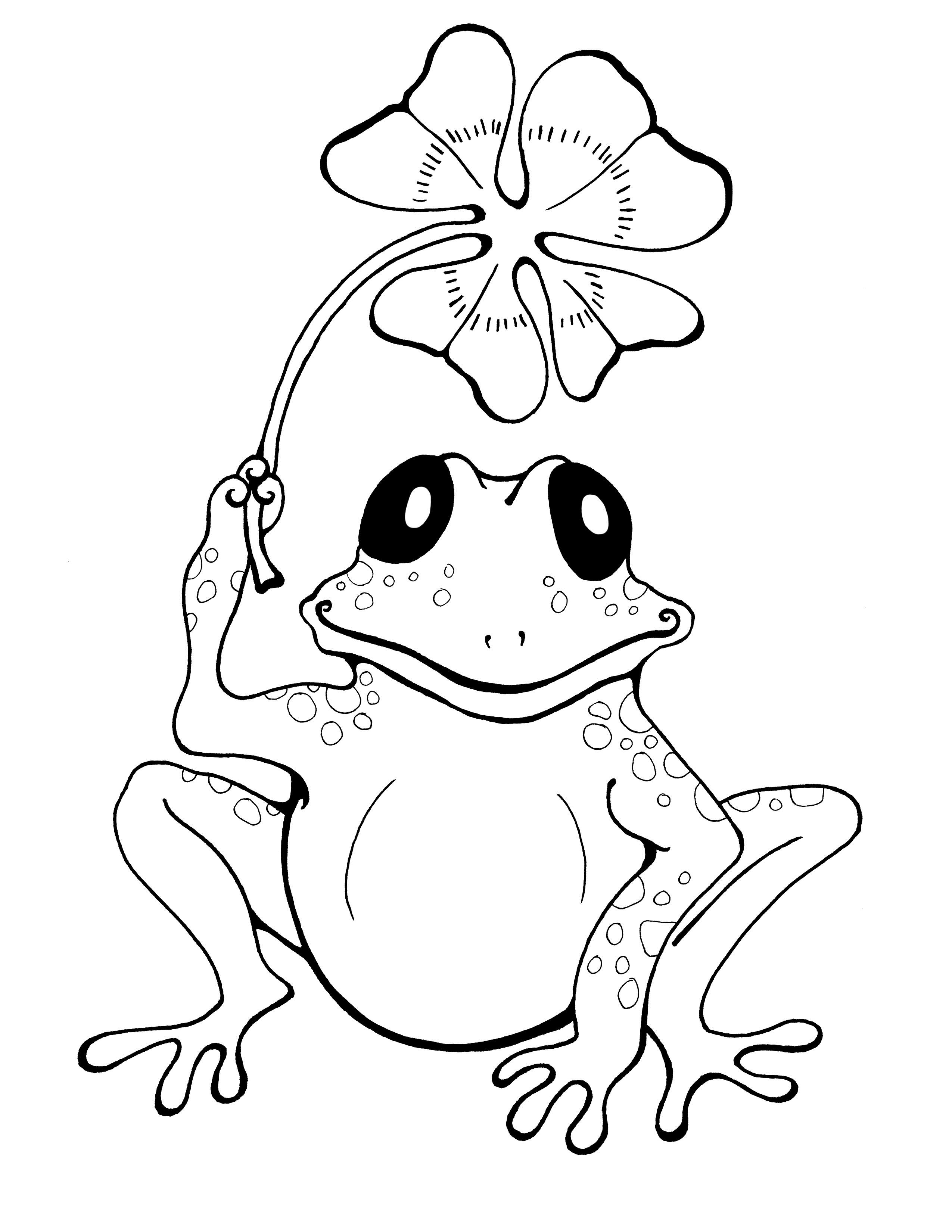 frog-color-sheet-funny