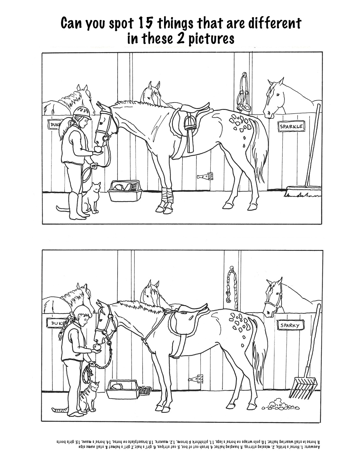 horse-activities-for-kids-difference