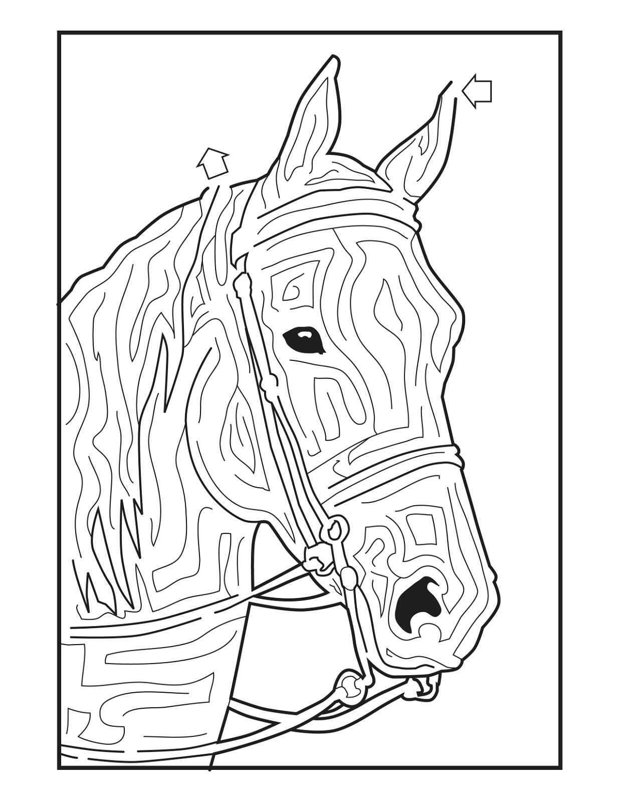 horse-activities-for-kids-maze