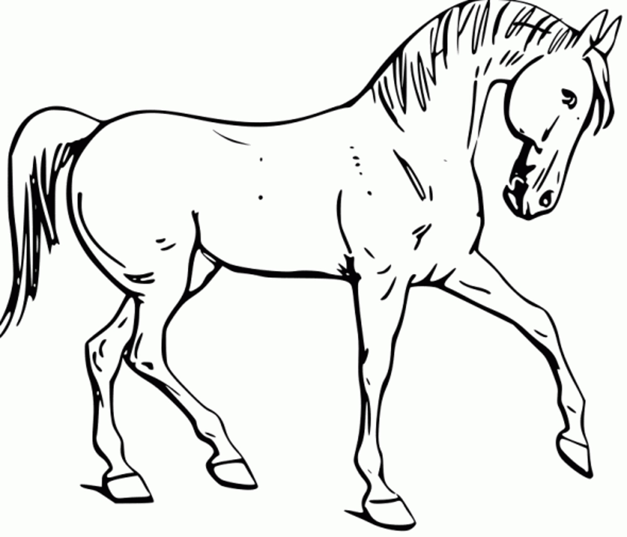 horse-color-page-printable