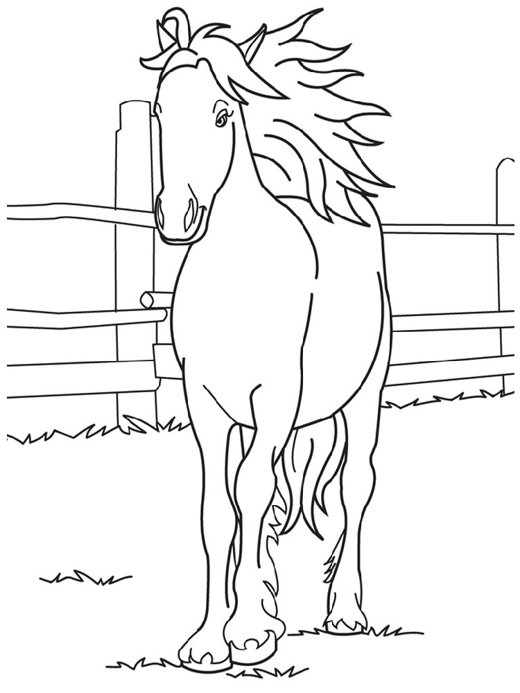 Free and Printable Horse Color