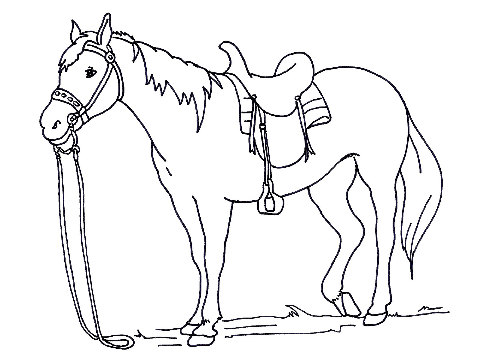 Horse Riding Coloring Pages - Learny Kids