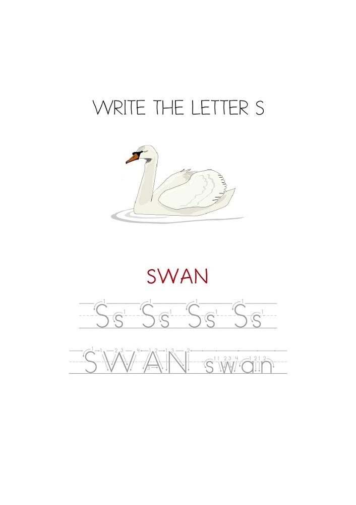 trace-letter-s-swan