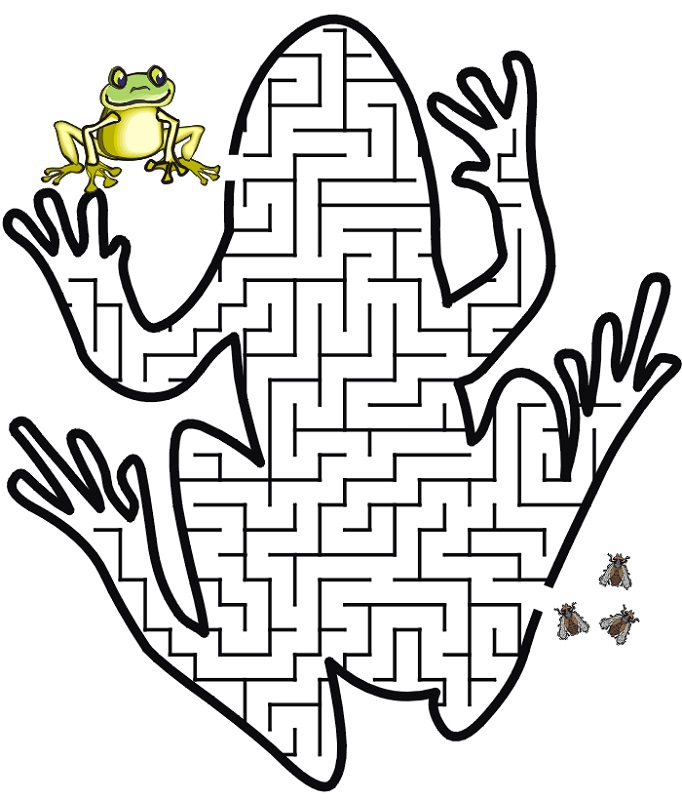 maze for children frog