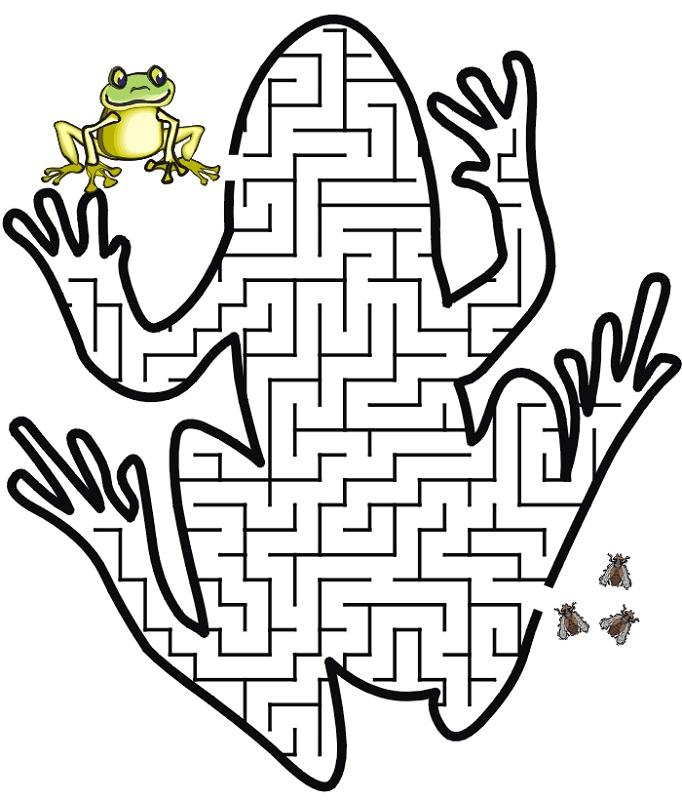 maze for children frog