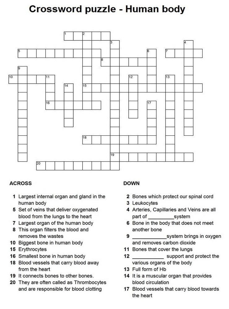 childrens crossword puzzles human