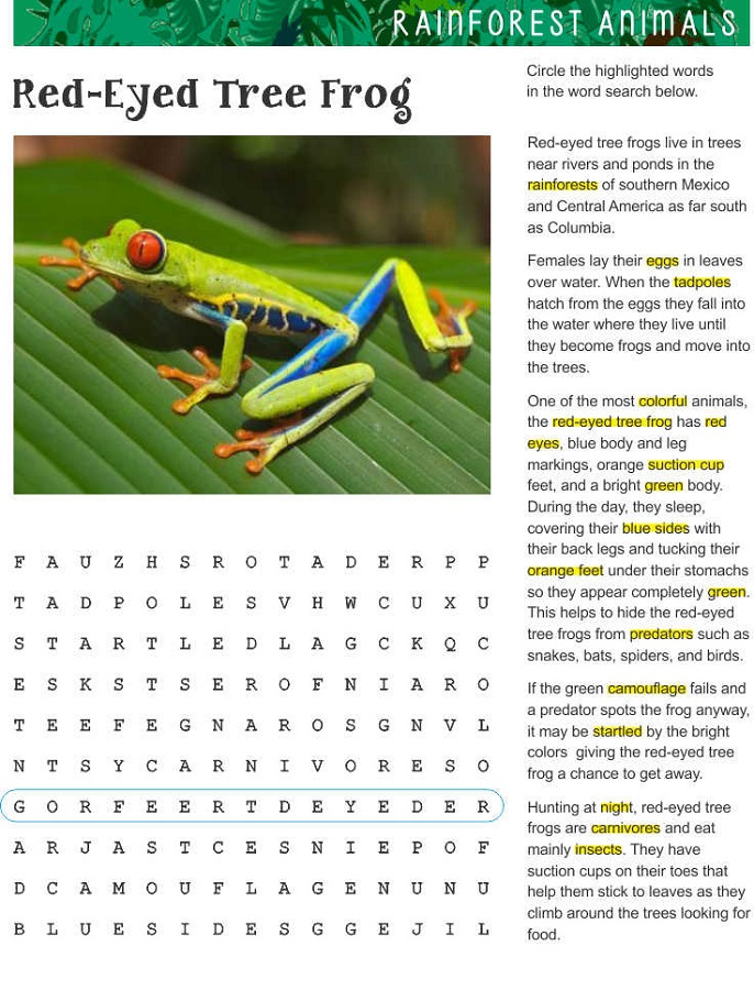 Frog Word Search Printable : Activity Shelter