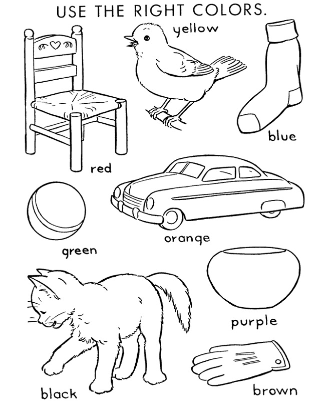 fun activity worksheets for kids color