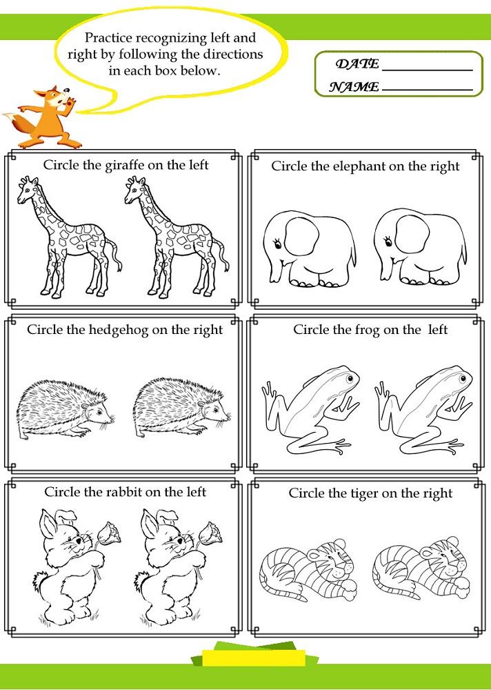 Fun activity sheets pdf