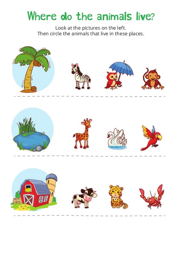 work sheets for kids animal