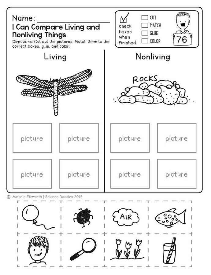 free science worksheets printable