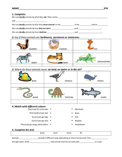 Free Worksheets for Elementary Students Science