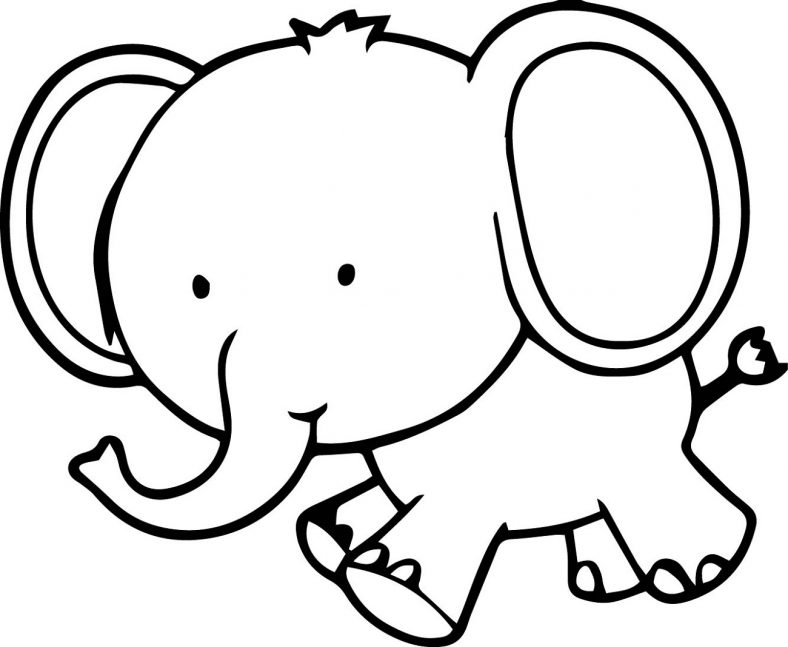 baby elephant coloring pages kids